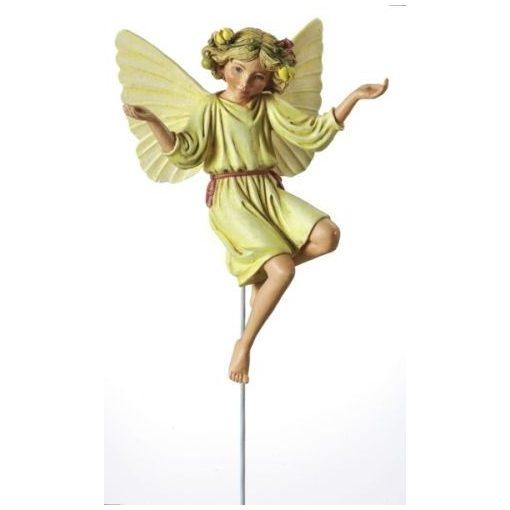 White Briony Fairy