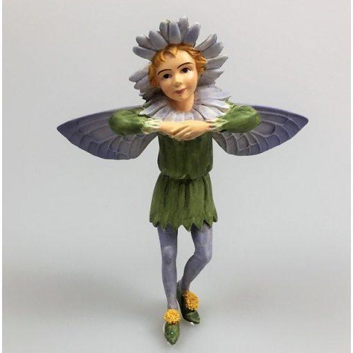 Aster Fairy