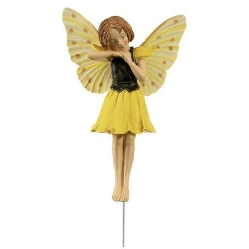 Laburnum Fairy