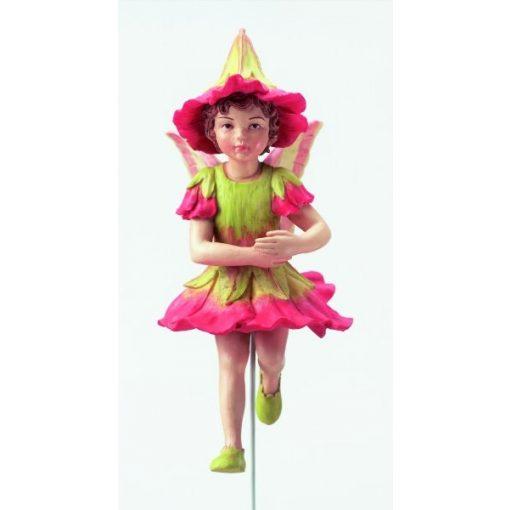Polyanthus Fairy