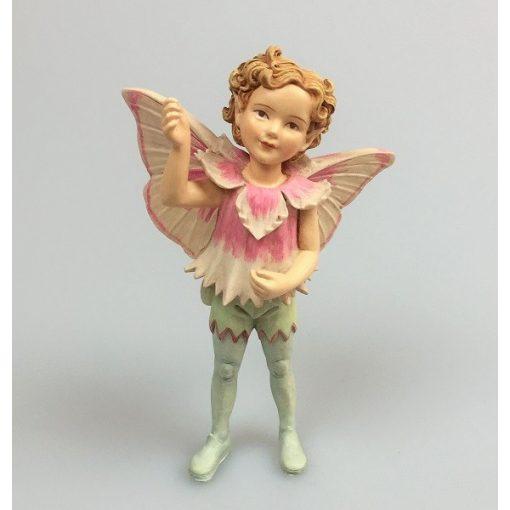 Pink Fairy Boy