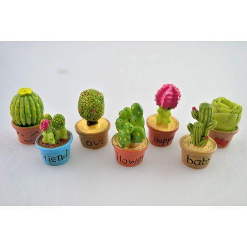 Kaktusy (7 ks)