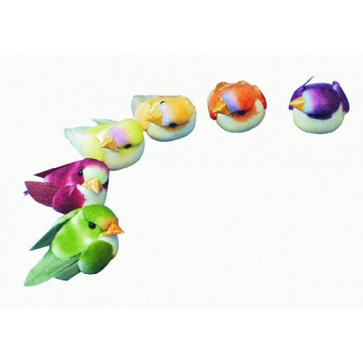 Farebný vtáčik 6 ks