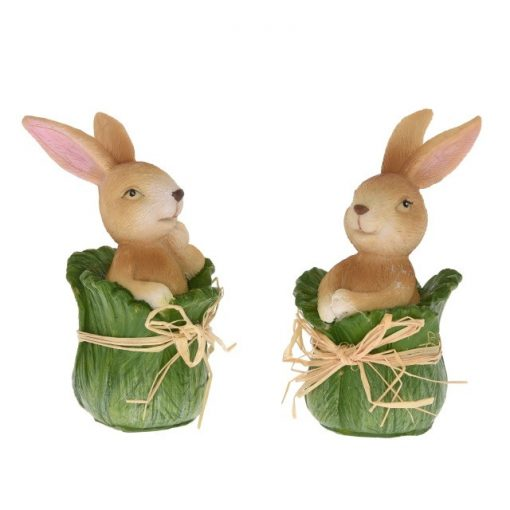 Zajačik v kapustnom liste