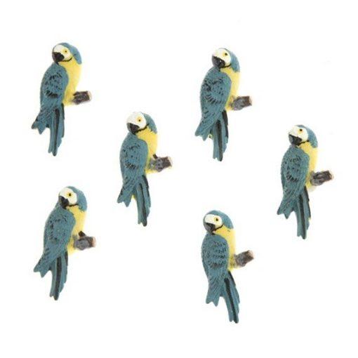 Papagáj (1 ks)