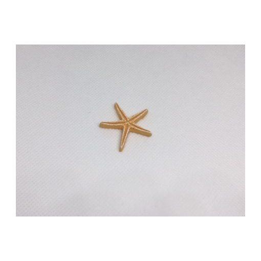 Morská hviezdica 1.