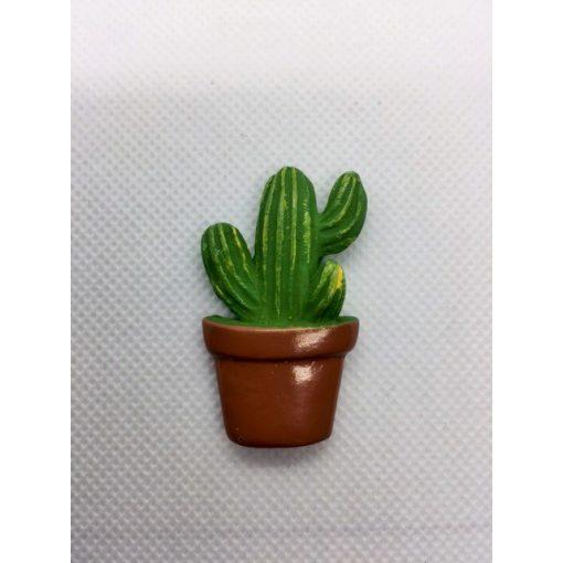 Kaktus 2.